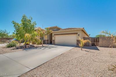 Queen Creek, San Tan Valley Single Family Home For Sale: 975 W Corriente Drive
