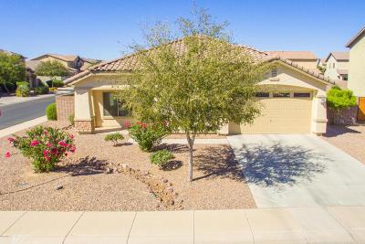 Maricopa Single Family Home For Sale: 44620 W Vineyard Street