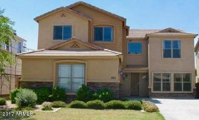 Tolleson Single Family Home For Sale: 3816 S 99th Drive