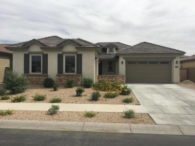 Queen Creek Single Family Home For Sale: 19685 E Walnut Road