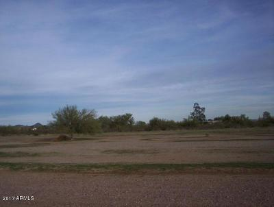 Surprise Residential Lots & Land For Sale: 169xx W Dale Lane