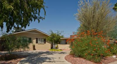 Phoenix Single Family Home For Sale: 3338 N 17th Avenue