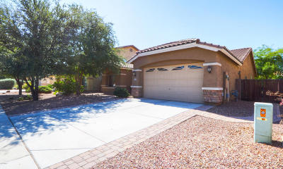 Maricopa Single Family Home For Sale: 44281 W Canyon Creek Drive
