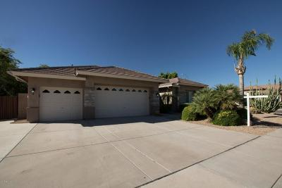 Peoria Single Family Home For Sale: 8107 W Carlota Lane