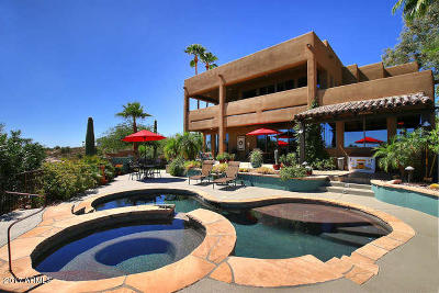 Fountain Hills Single Family Home For Sale: 16055 N Overlook Court