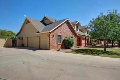 Chandler Single Family Home For Sale: 609 N Bullmoose Drive