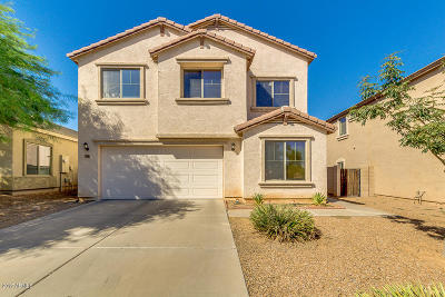 San Tan Valley Single Family Home For Sale: 1196 W Vineyard Plains Drive