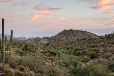 Scottsdale Residential Lots & Land For Sale: 42382 N Chiricahua Pass