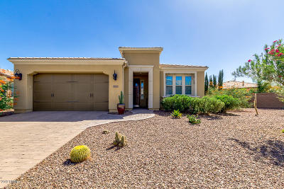 San Tan Valley Single Family Home For Sale: 1579 E Alegria Road
