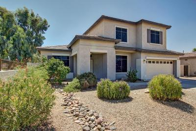 Queen Creek Single Family Home For Sale: 21299 E Lords Way