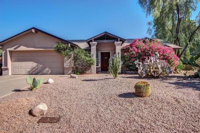 Mesa Single Family Home For Sale: 6463 E Julep Street