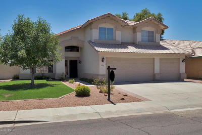 Chandler Single Family Home For Sale: 4633 W Tara Drive