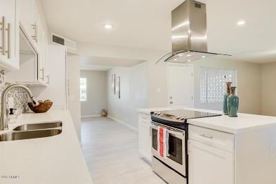 Mesa Single Family Home For Sale: 1124 E 9th Drive