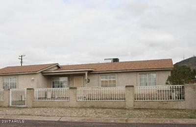 Phoenix Single Family Home For Sale: 1220 W Ironwood Drive