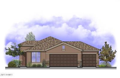 Avondale Single Family Home For Sale: 11967 W Rio Vista Lane
