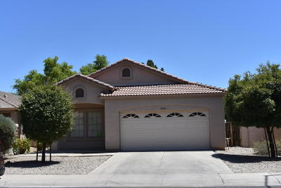 Mesa Single Family Home For Sale: 10149 E Kilarea Avenue