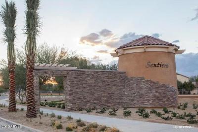 Queen Creek Single Family Home For Sale: 22184 E Sentiero Drive