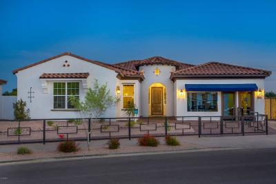 Queen Creek Single Family Home For Sale: 22204 E Sentiero Drive