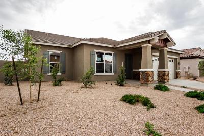 Queen Creek Single Family Home For Sale: 22236 E Sentiero Drive