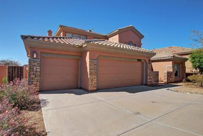 Fountain Hills Single Family Home For Sale: 9626 N Indigo Hill Drive