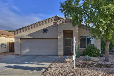 Surprise Single Family Home For Sale: 13518 W Young Street