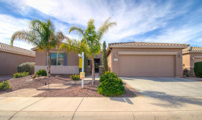 Maricopa Single Family Home For Sale: 19764 N Swan Court