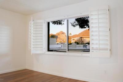 Phoenix Rental For Rent: 4201 E Camelback Road #84