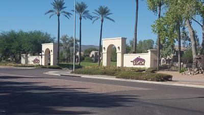 Phoenix Rental For Rent: 3131 E Legacy Drive #2096