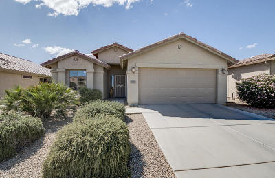 Pinal County Single Family Home For Sale: 71 N Agua Fria Lane