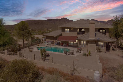 Cave Creek Single Family Home For Sale: 42244 N Spur Cross Road