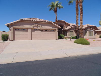 Maricopa County, Pinal County Single Family Home For Sale: 19412 N 86th Drive