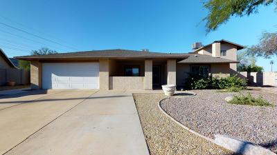 Phoenix Single Family Home For Sale: 12002 S Mandan Street