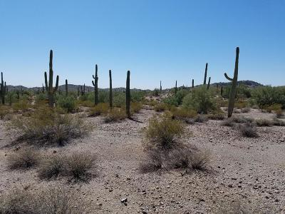 Queen Creek AZ Residential Lots & Land For Sale: $99,000