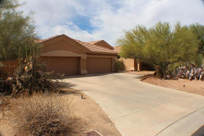 Cave Creek Single Family Home For Sale: 31812 N 53rd Street