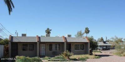 Phoenix Multi Family Home For Sale: 10634 13th Avenue