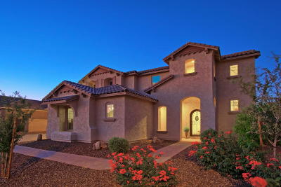 Peoria Single Family Home For Sale: 9372 W Foothill Drive