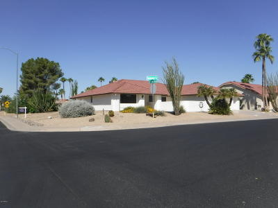Sun City West Single Family Home For Sale: 13322 W Serenade Circle