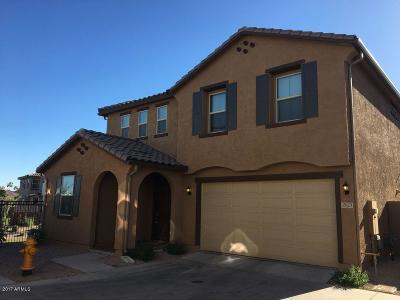 Chandler Single Family Home For Sale: 2819 E Detroit Street