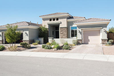 Cave Creek Single Family Home For Sale: 5440 E Windstone Trail