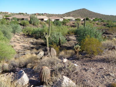 Scottsdale Residential Lots & Land For Sale: 14521 E Corrine Drive