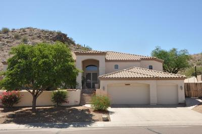 Phoenix Single Family Home For Sale: 14818 S 20th Street
