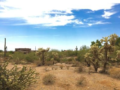 Mesa Residential Lots & Land For Sale: 2904 N 90th Street