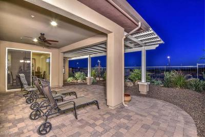 Trilogy, Trilogy At Vistancia, Trilogy At Vistancia Parcel C2 Single Family Home For Sale: 13217 W Skinner Drive