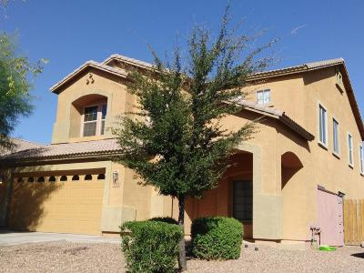 Tolleson Single Family Home For Sale: 3711 S 91st Lane