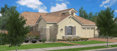 Gilbert Single Family Home For Sale: 4348 E Ronald Street