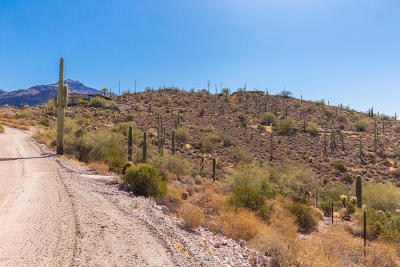 Gold Canyon Residential Lots & Land For Sale: 3267 S Yaqui Lane