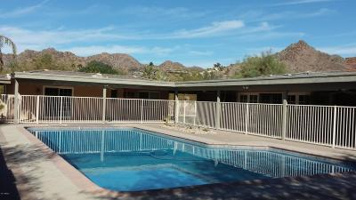 Paradise Valley Single Family Home For Sale: 3827 E Marlette Avenue