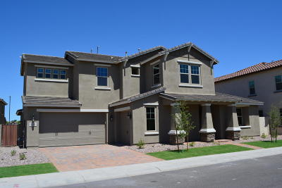 Chandler Single Family Home For Sale: 966 W Kaibab Drive