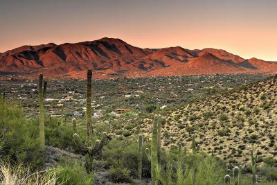 Cave Creek Residential Lots & Land For Sale: 50xx Old Stage Road