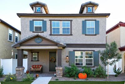 Mesa Single Family Home For Sale: 2721 S Santa Rita